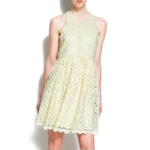 Zara carousel lace skater dress
